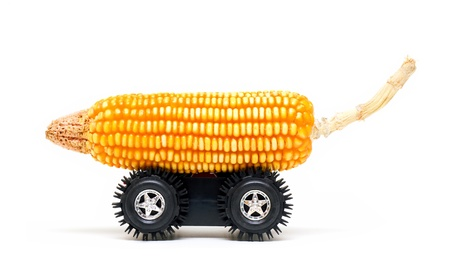 Corn cob and wheel with clean bio fuel concept photo