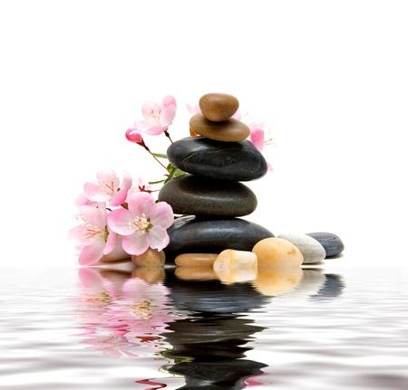 Zen Spa pierres avec des fleurs