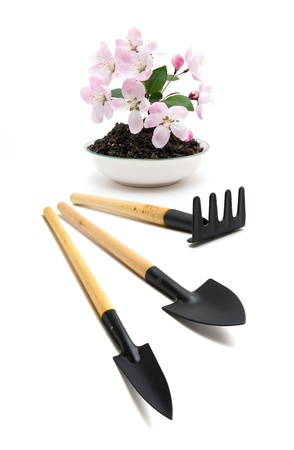 Peach blossom and garden tools Stock Photo - 14895993