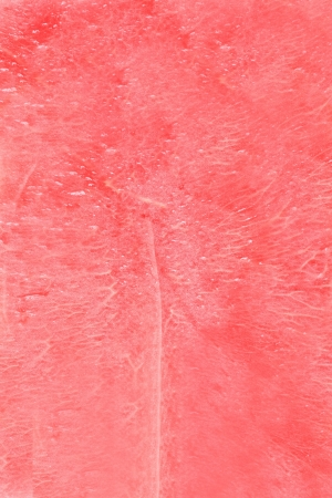 watermelon texture photo
