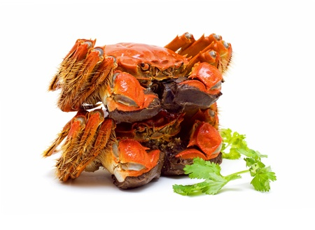 Steamed Chinese Lake Crab  photo