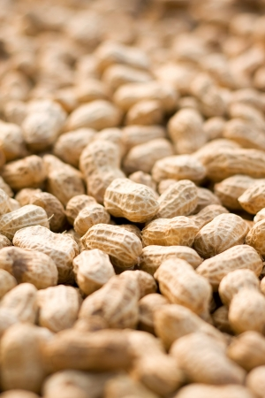 goober peas: Peanut background