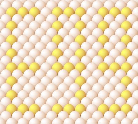 Egg background Stock Vector - 17360530