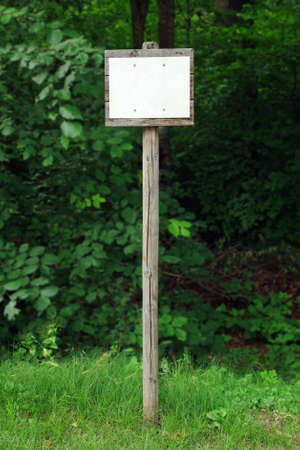Old looking, wooden, blank sign in the forest, ready to write, over blurred background Stock Photo