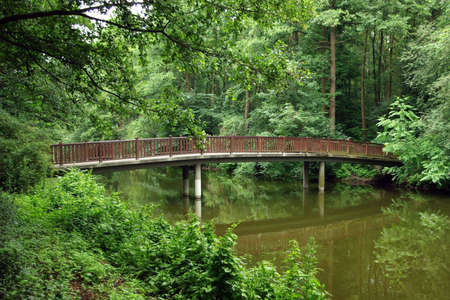Small fairy-tale bridge in the green forest