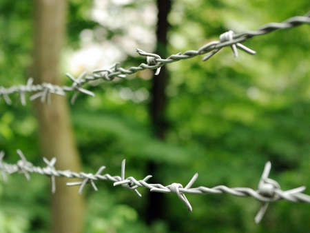 Two lines of stainless barbwire over the blurred background, close-up