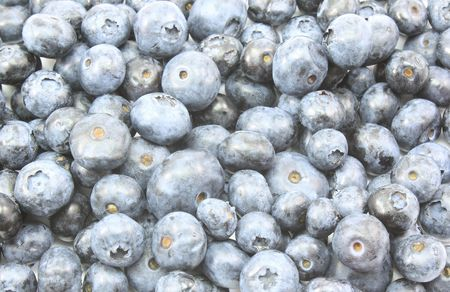 A nice background of blue berries close up.