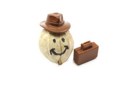 hickory nuts: A hickory nut with a smiley face has a hat and briefcase as he goes to work.
