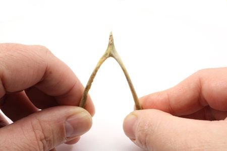 Photograph of two people pulling apart a turkey wishbone