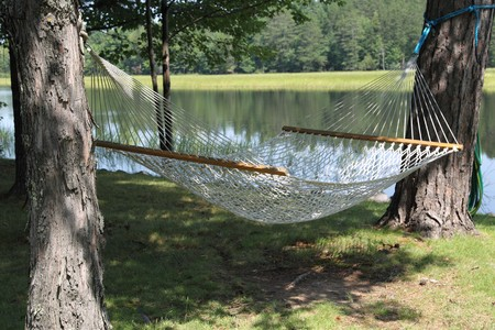 A hammock between two trees on the shoreline of the Wisconsin River