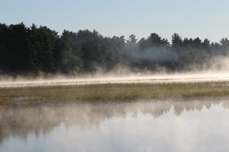 Fog Rising over the wild rice on the Wisconsin River Stock Photo - 8713047
