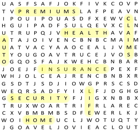 A word find search insurance related terms such as premiums, claims, home, auto, security, health and life.
