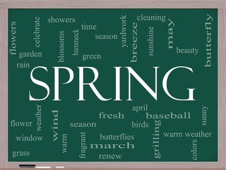 Spring Word Cloud Concept on a Chalkboard with great terms such as season, flowers, showers, baseball, April and more. Stock Photo - 12929498