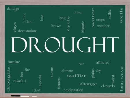 wells: Drought Word Cloud Concept on a Blackboard with great terms such as water, crops, weather, dry, climate change and more