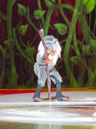 treasure trove: GREEN BAY, WI - MARCH 10: Rafiki from the Lion King on skates at the Disney on Ice Treasure Trove show at the Resch Center on March 10, 2012 in Green Bay, Wisconsin.