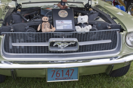 COMBINED LOCKS, WI - AUGUST 18:  The engine of a light green 1967 Ford Mustang classic car at the 2nd Annual Horizon of Hope Generations Car and Truck Show on August 18, 2012 in Combined Locks, Wisconsin.