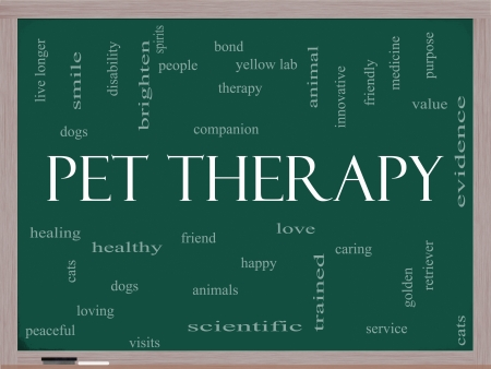 pet therapy: Pet Therapy Word Cloud Concept on a Blackboard with great terms such as dog, cat, companion, people, loving and more. Stock Photo