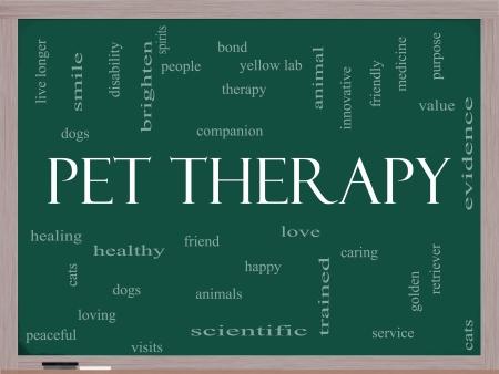zooth�rapie: Zooth�rapie Parole Cloud Concept sur un tableau noir avec des termes tels que de grands chien, chat, compagnon, les gens, l'amour et bien plus.