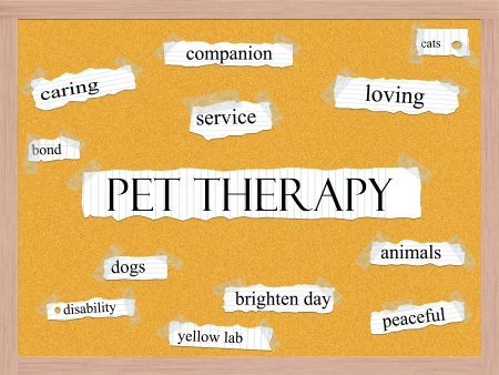 pet therapy: Pet Therapy Corkboard Word Concept with great terms such as caring, service, dog, cat and more.