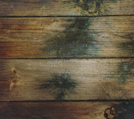 Grunge Wood and Paintball Background making a great texture Reklamní fotografie