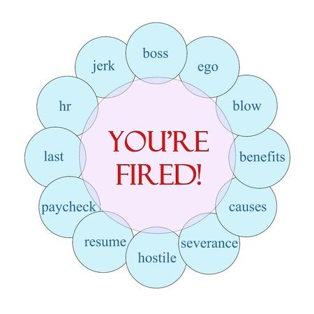 severance: Est�s despedido diagrama circular concepto en rosa y azul con los t�rminos de calidad, como idiota, jefe, hr, cesant�a y m�s.