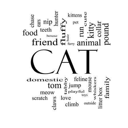 Cat Word Cloud Concept in black and white with great terms such as feline, tabby, food, nip and more. Stock Photo - 17996216