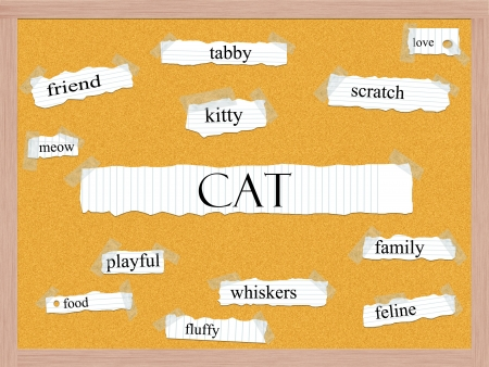 Cat Corkboard Word Concept with great terms such as kitty, tabby, love and more. Stock Photo - 17996188