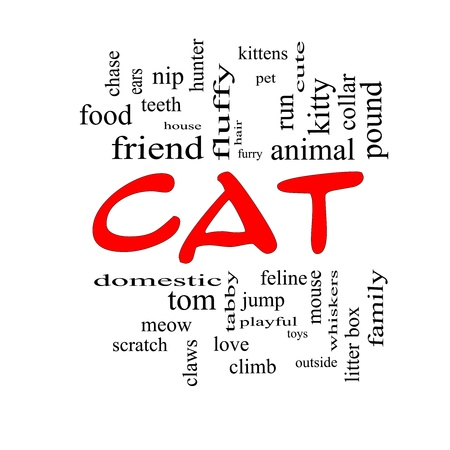 nip: Cat Word Cloud Concept in red caps with great terms such as feline, tabby, food, nip and more. Stock Photo