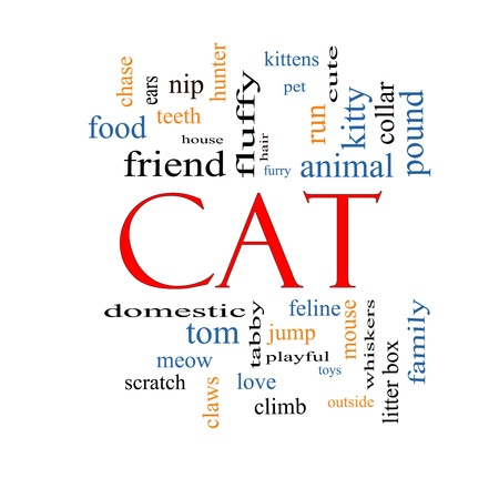 Cat Word Cloud Concept with great terms such as feline, tabby, food, nip and more. Stock Photo - 17996199