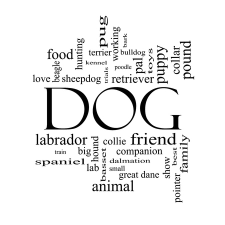 Dog Word Cloud Concept in black and white with great terms such as love, friend, best, hound and more. Stock Photo