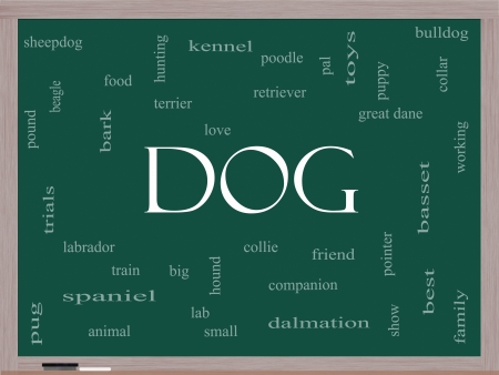 Dog Word Cloud Concept on a Blackboard with great terms such as love, friend, best, hound and more. photo