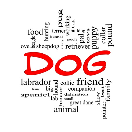 Dog Word Cloud Concept in red caps with great terms such as love, friend, best, hound and more. photo