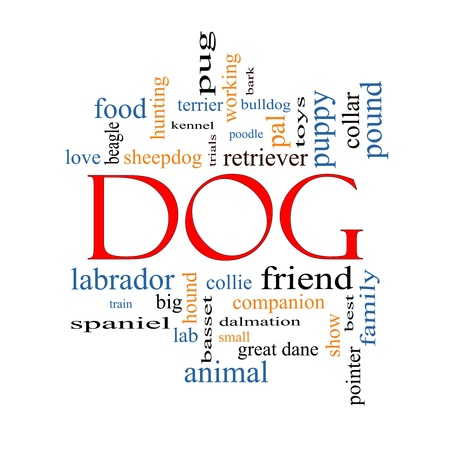 Dog Word Cloud Concept with great terms such as love, friend, best, hound and more. photo