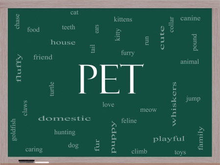 meow: Pet Word Cloud Concept on a Blackboard with great terms such as cat, turtle, dog, goldfish and more.