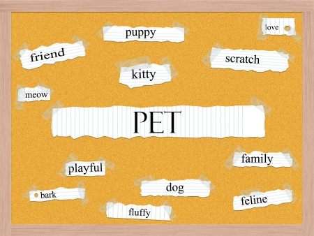 Pet Corkboard Word Concept with great terms such as friend, kitty, puppy and more. Stock Photo - 17996214