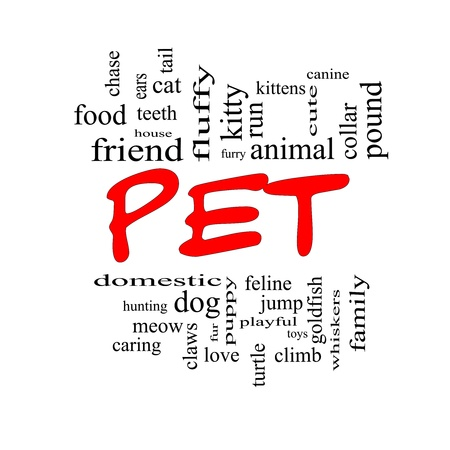 Pet Word Cloud Concept in red caps with great terms such as cat, turtle, dog, goldfish and more. Stock Photo - 17996204