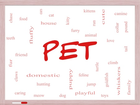 chasing tail: Pet Word Cloud Concept on a Dry Erase Board with great terms such as cat, turtle, dog, goldfish and more.