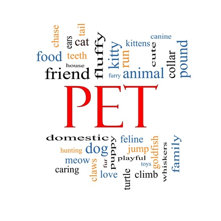 Pet Word Cloud Concept with great terms such as cat, turtle, dog, goldfish and more. Stock Photo - 17996206