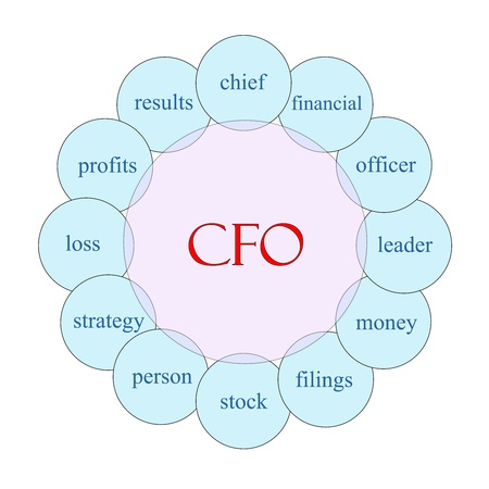 cfo: CFO concept circular diagram in pink and blue with great terms such as chief, financial, officer, money and more.