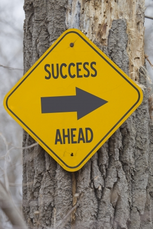 Success Ahead Arrow yellow and black Sign on a old tree making a great concept. photo