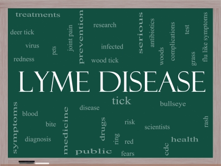 wood tick: Lyme Disease Word Cloud Concept on a Blackboard with great terms such as deer tick, blood, bullseye, bite and more. Stock Photo