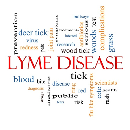 wood tick: Lyme Disease Word Cloud Concept with great terms such as deer tick, blood, bullseye, bite and more. Stock Photo
