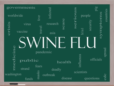 h1n1 vaccines: Swine Flu Word Cloud Concept on a Blackboard with great terms such as fever, asia, pandemic, outbreak and more.