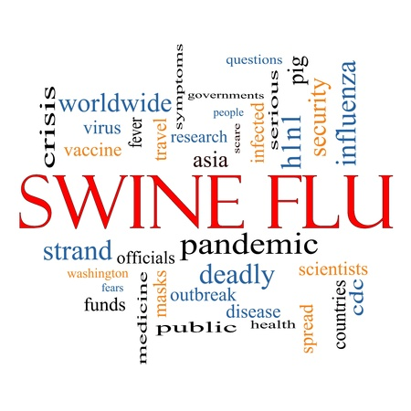 h1n1 vaccines: Swine Flu Word Cloud Concept with great terms such as fever, asia, pandemic, outbreak and more. Stock Photo