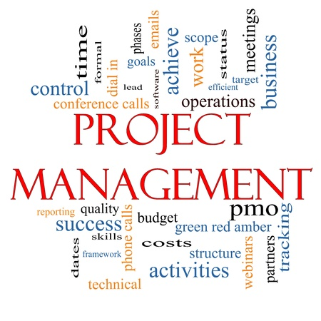 Project Management Word Cloud Concept with great terms such as pmo, lead, goals, business, meetings and more. Banco de Imagens