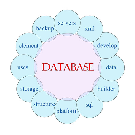 xml: Database concept circular diagram in pink and blue with great terms such as servers, xml, develop, data and more. Stock Photo