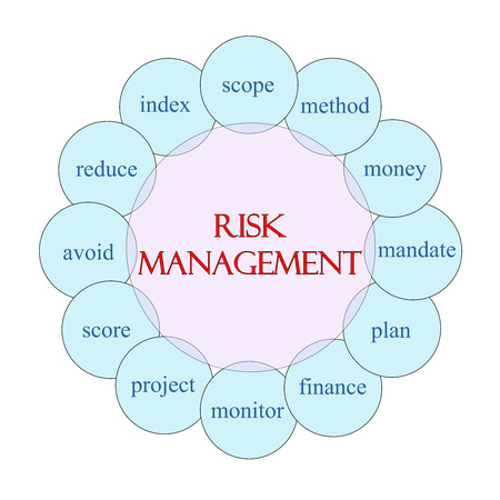 Risk Management concept circular diagram in pink and blue with great terms such as scope, method, money and more.