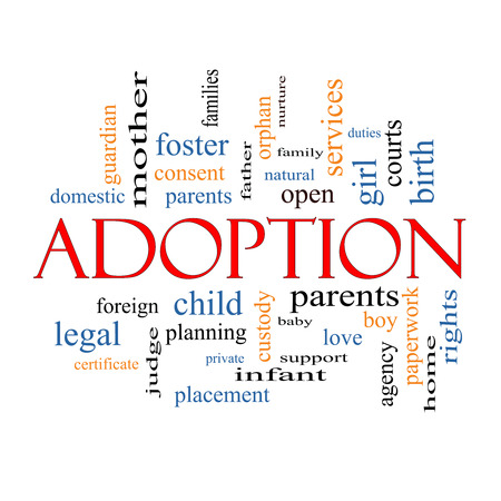 duties: Adoption Word Cloud Concept with great terms such as baby, parent, rights, love and more.