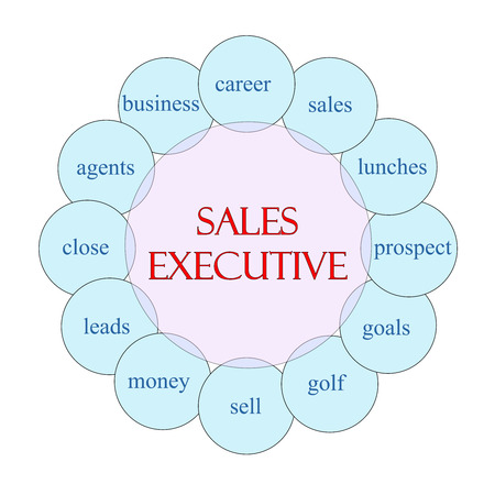 prospect: Sales Executive concept circular diagram in pink and blue with great terms such as career, goals, leads and more.