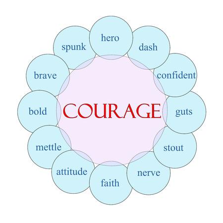 cerveza negra: Concepto Courage diagrama circular en grandes t�rminos de color rosa y azul con como h�roe, tablero, stout, nervios y m�s.